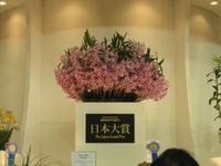2012日本大賞.JPG